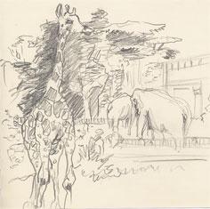 girafe et éléphants